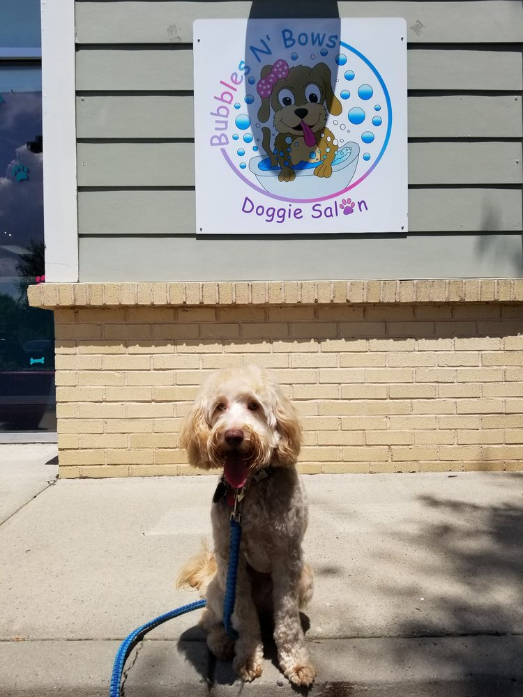 Bubbles N' Bows Doggie Salon