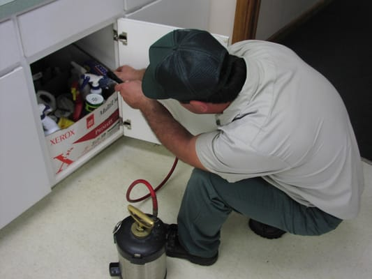 Abc Pest Control 10921 10925 66th St N Largo Fl Nurseries Mapquest