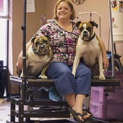 Central Ohio Dog Grooming Academy Pet Groomers 7598 E Main St