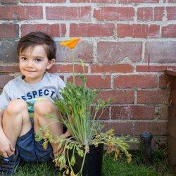 culver city preschool treehouse tots preschool 110 fotos y 15 rese 241 as 576