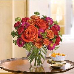Jean And Hall Florists 14 Photos Amp 12 Reviews Florists