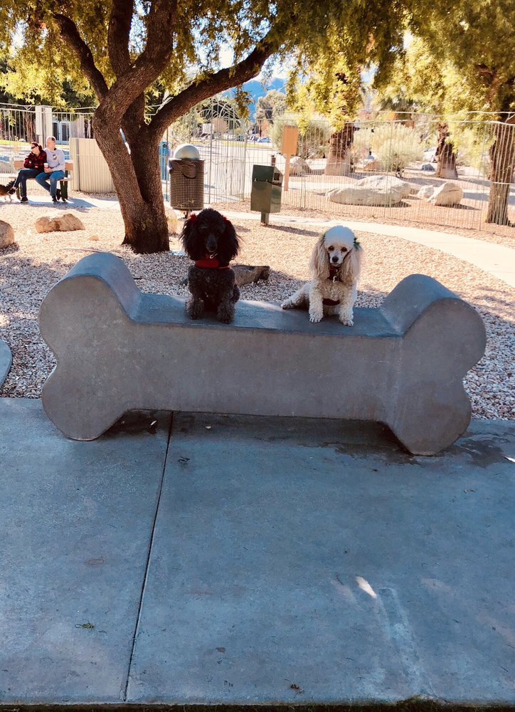 Palm Springs Dog Park