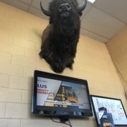 Photo Of O Tires Greeley Co United States The Great Buffalo