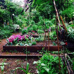 Photo Of 6BC Botanical Garden   New York, NY, United States. Rain Drenched