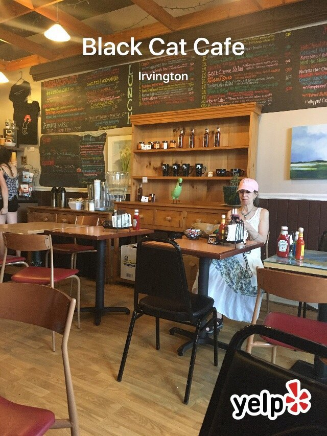 Black Cat Cafe Menu Irvington