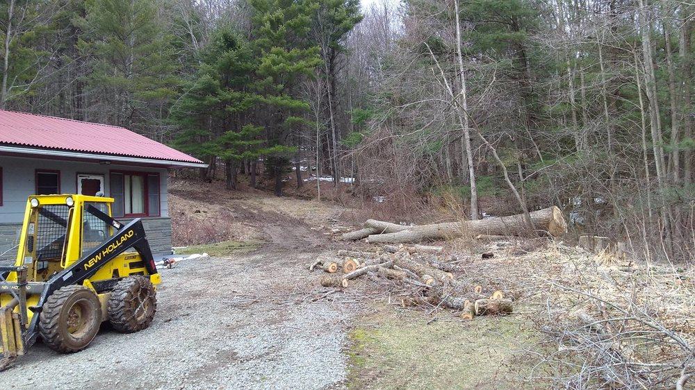 Budine Tree Service: Deposit, NY