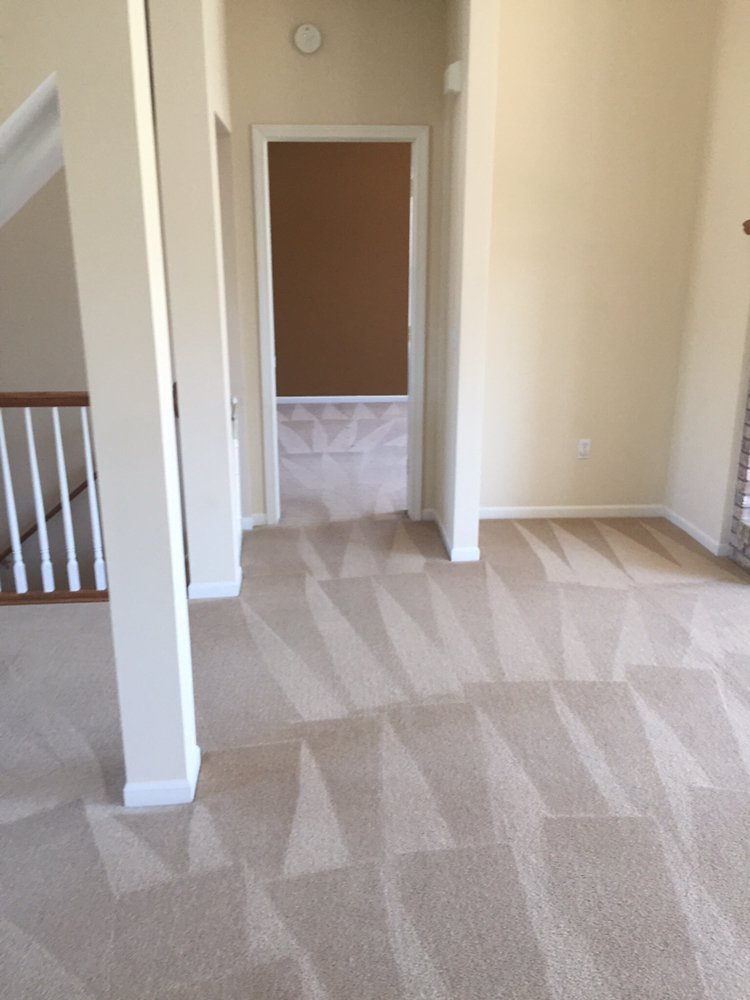 Fenton Carpet Cleaning: 14018 Torrey Rd, Fenton, MI