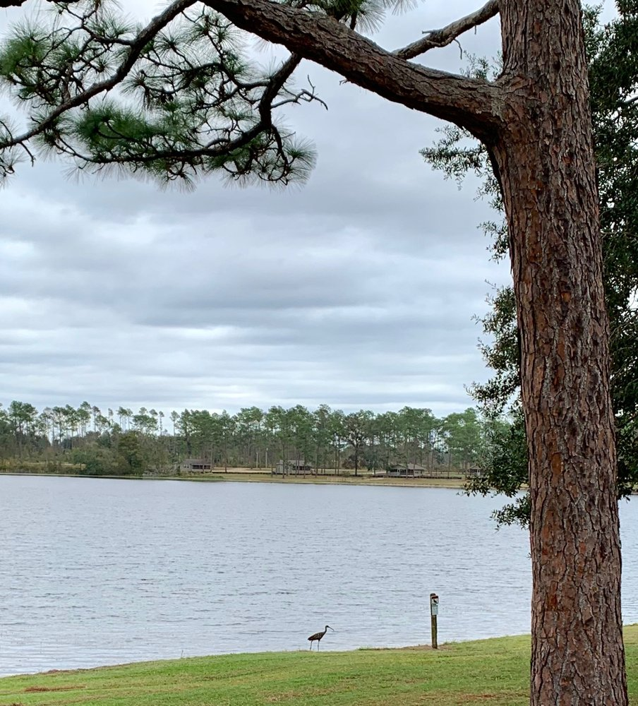 Seminole State Park: 7870 State Park Dr, Donalsonville, GA