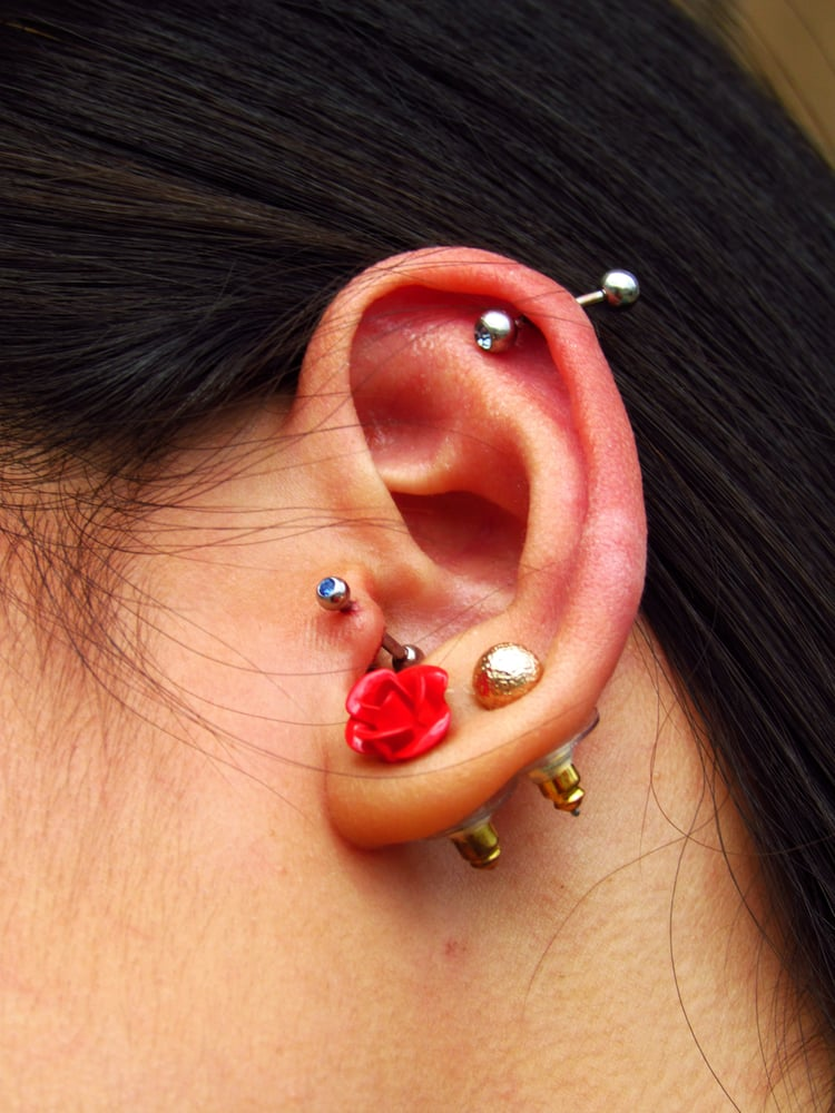 Cartilage and tragus done at twisted by aly yelp for Twisted tattoo chicago