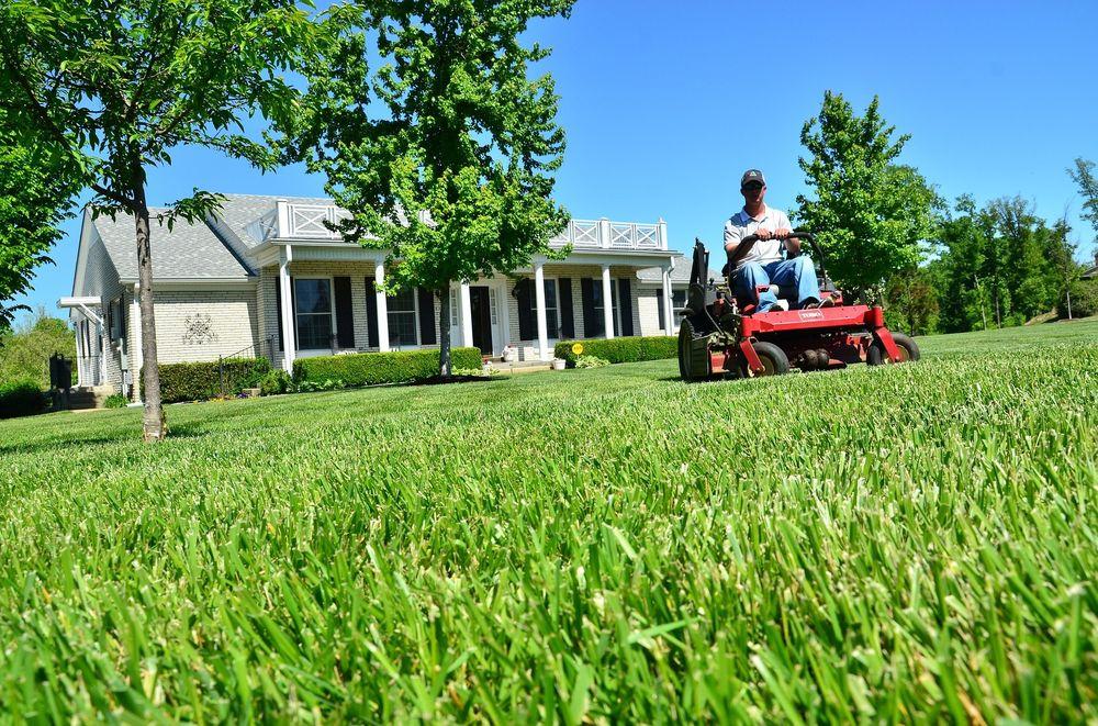 Neighborly Lawn Care