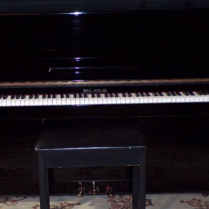 Piano Forte: 2507 Duss Ave, Ambridge, PA