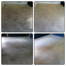 Heaven S Best Carpet Cleaning 47 Photos Amp 170 Reviews