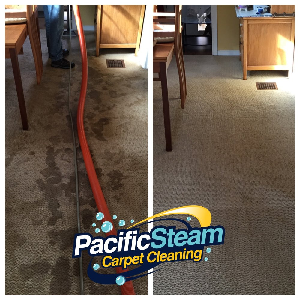 Soiled Carpets Cleaned Out Amazing Yelp