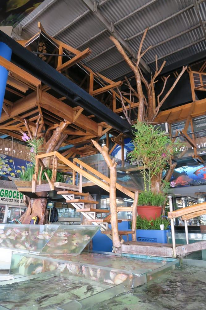 Fish mo ko shopping gen mc arthur ave araneta center for Koi pond quezon city