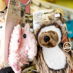 48cb27de0633e5 Happy Dog Wash - 40 Photos & 27 Reviews - Pet Groomers - 6465 S ...
