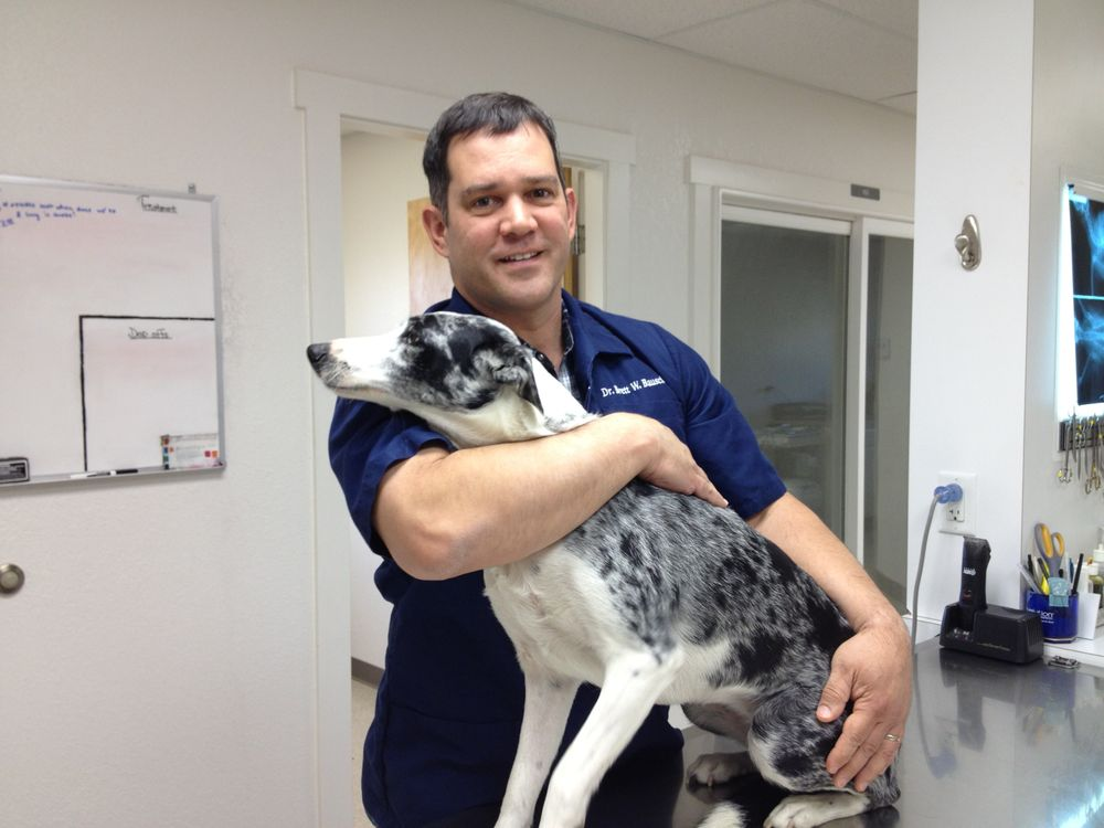 Canyon Small Animal Hospital: 3923 S 10th Ave, Caldwell, ID