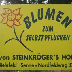 Blumen Bielefeld blumen zum selbstpflücken shopping brinkstraße bielefeld