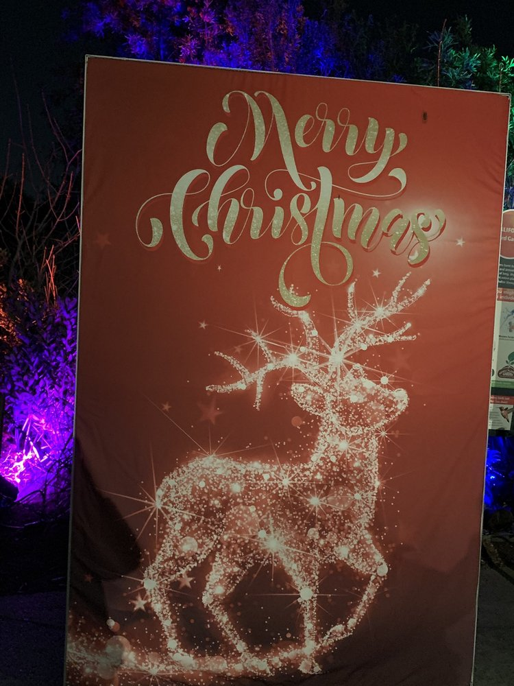 Christmas Lighted Sign.Merry Christmas Lighted Sign La Zoo Lights The Los