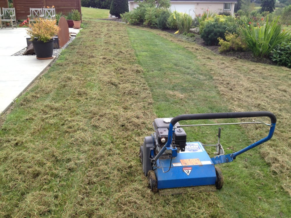 Oasis EarthWorks Lawn Care: Bow, WA