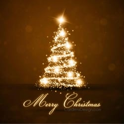 Northwest Christmas Tree - Christmas Trees - 1955 S Waterman Ave ...