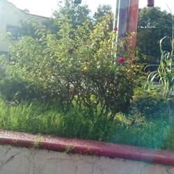 Glorieta los bastones viveros del valle tlalnepantla de for Viveros del valle