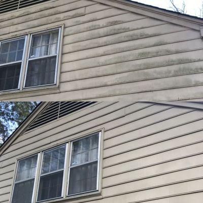 Window Gang