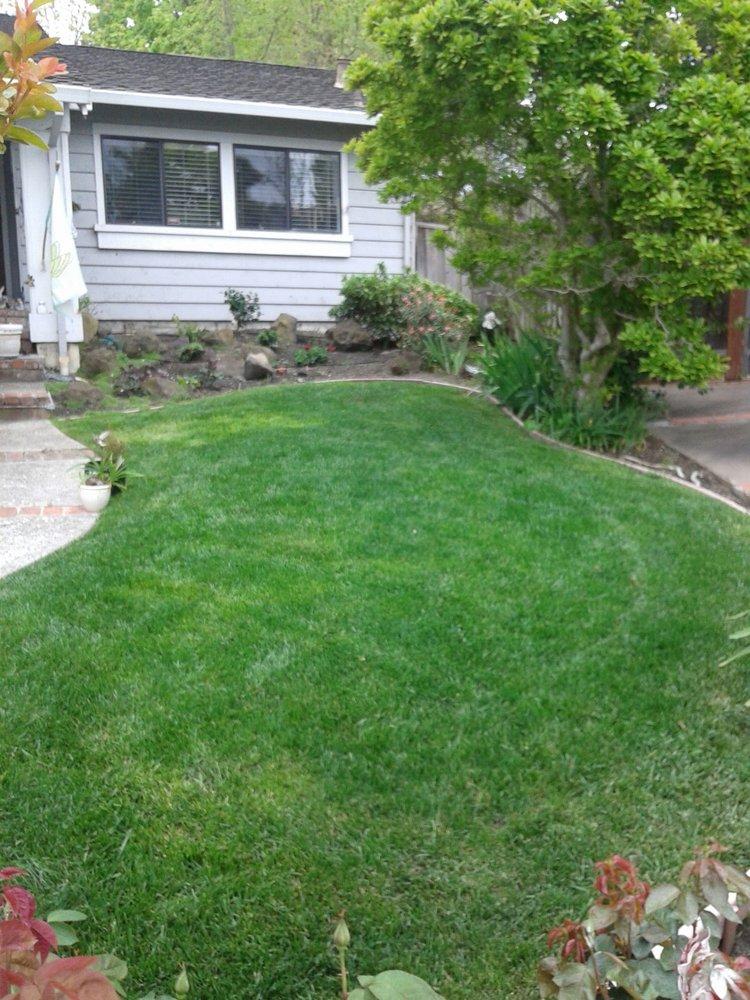 All Season Tree & Garden Service: 1439 Hazelnut Way, Manteca, CA