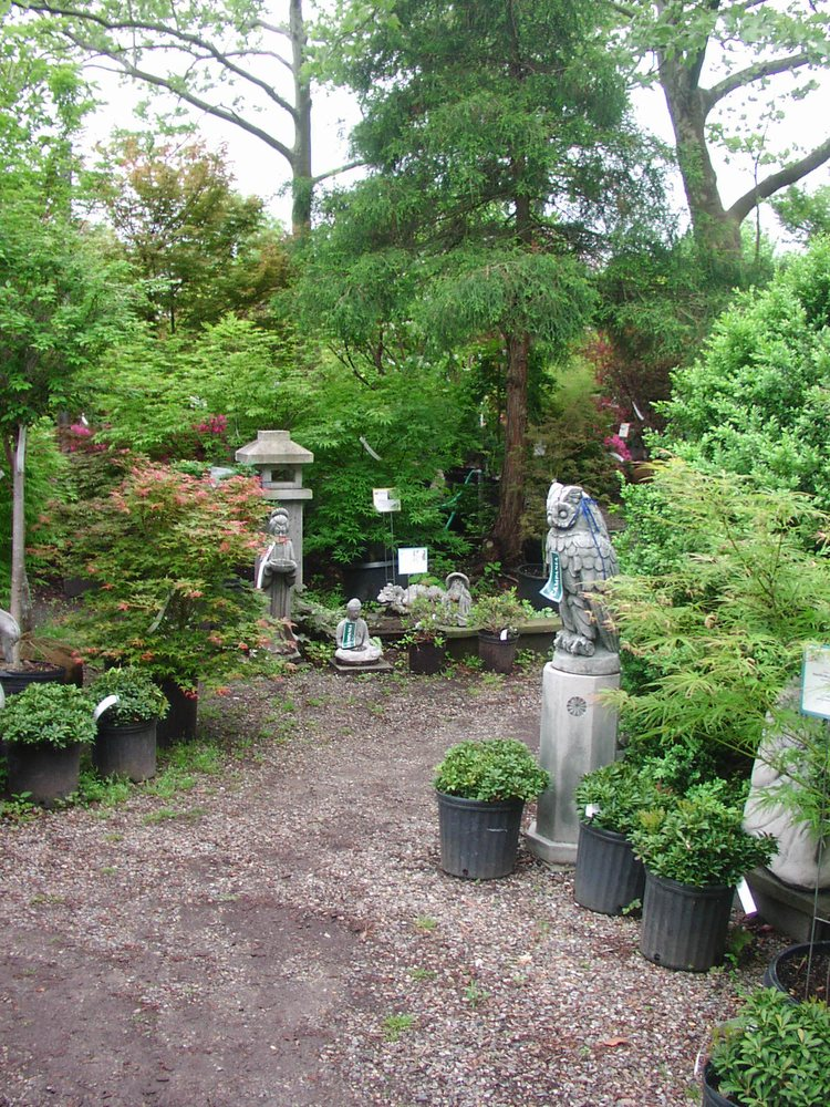 Ambleside Gardens & Nursery: 834 US Hwy 206, Hillsborough, NJ