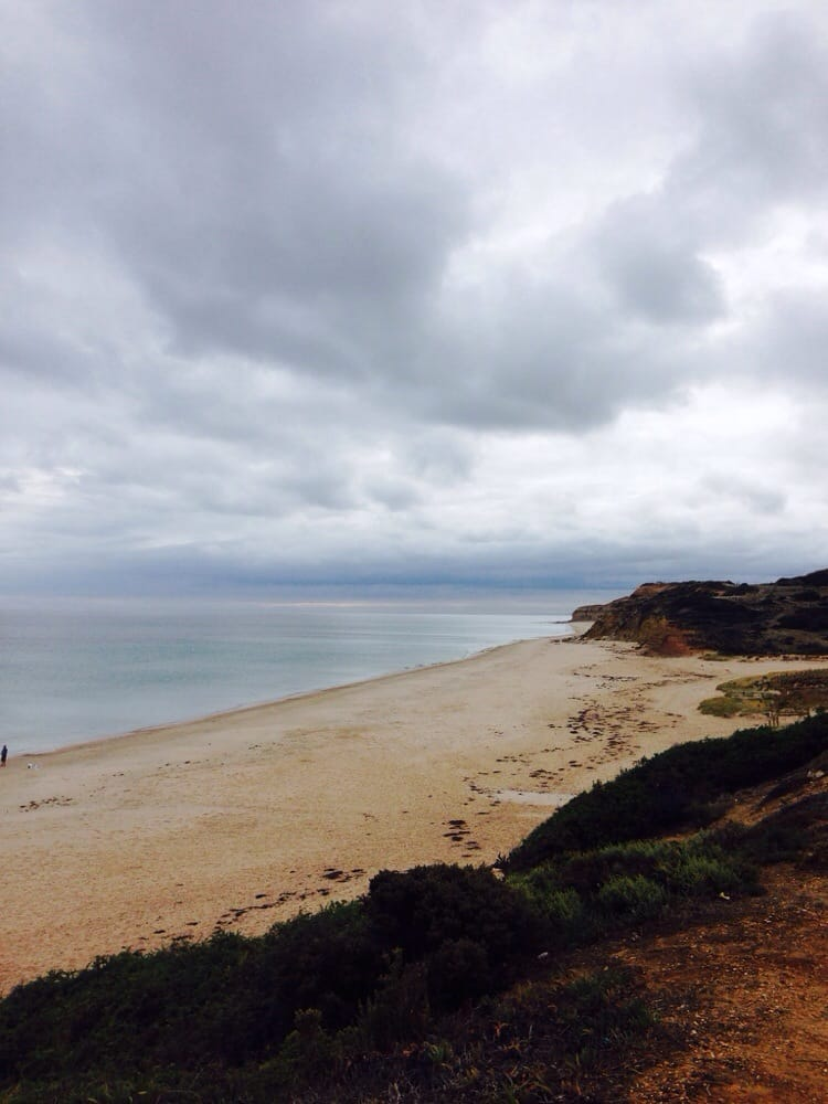 Looking good today port willy yelp for Port willunga