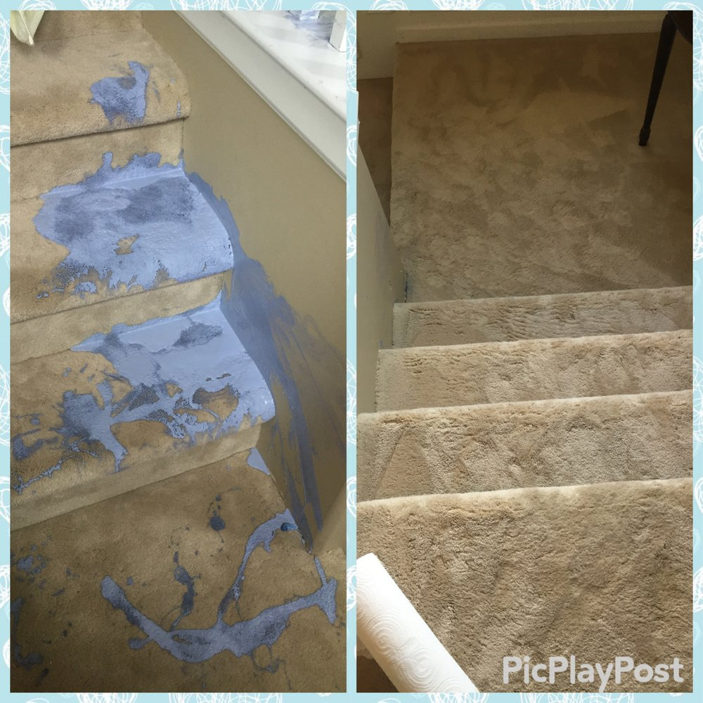 Cort Carpet Cleaning: 676 Fairledge St, Lake Orion, MI