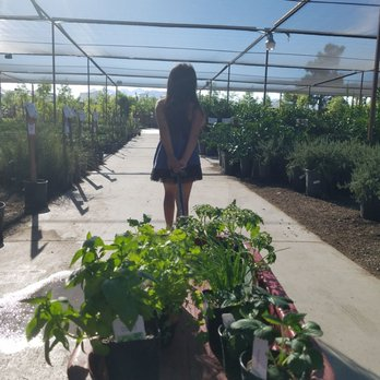 Photo Of Star Nursery Las Vegas Nv United States She Wanted To