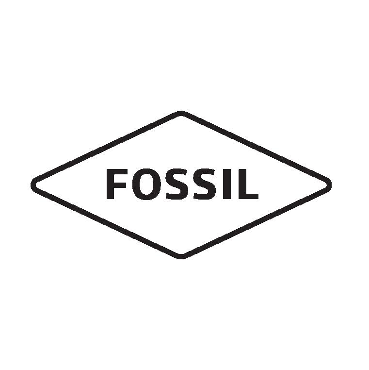 Fossil Outlet: 241 Fort Evans Rd NE, Leesburg, VA