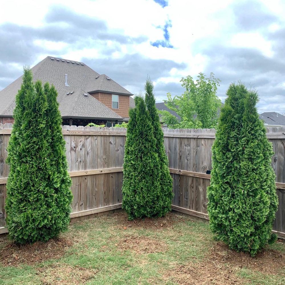 Arkansas Outdoor Professionals: Elkins, AR