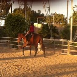 Solomare Equestrian Training - CLOSED - 14 Photos - Horseback Riding