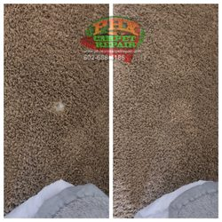 photo of phoenix carpet repair u0026 cleaning phoenix az united states pet