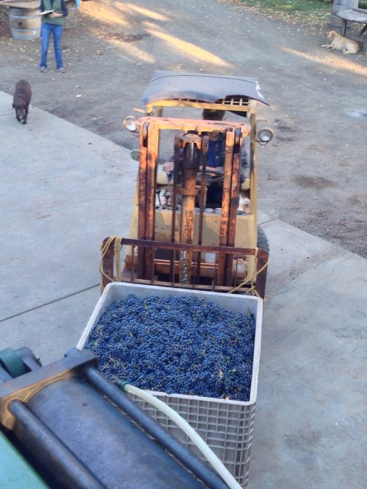 Summit Lake Vineyards & Winery: 2000 Summit Lake Dr, Angwin, CA
