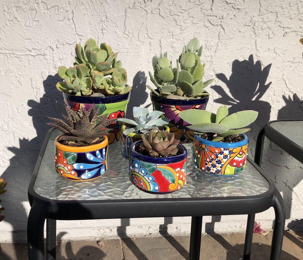 Los Osos Valley Nursery: 301 Los Osos Valley Rd, Los Osos, CA