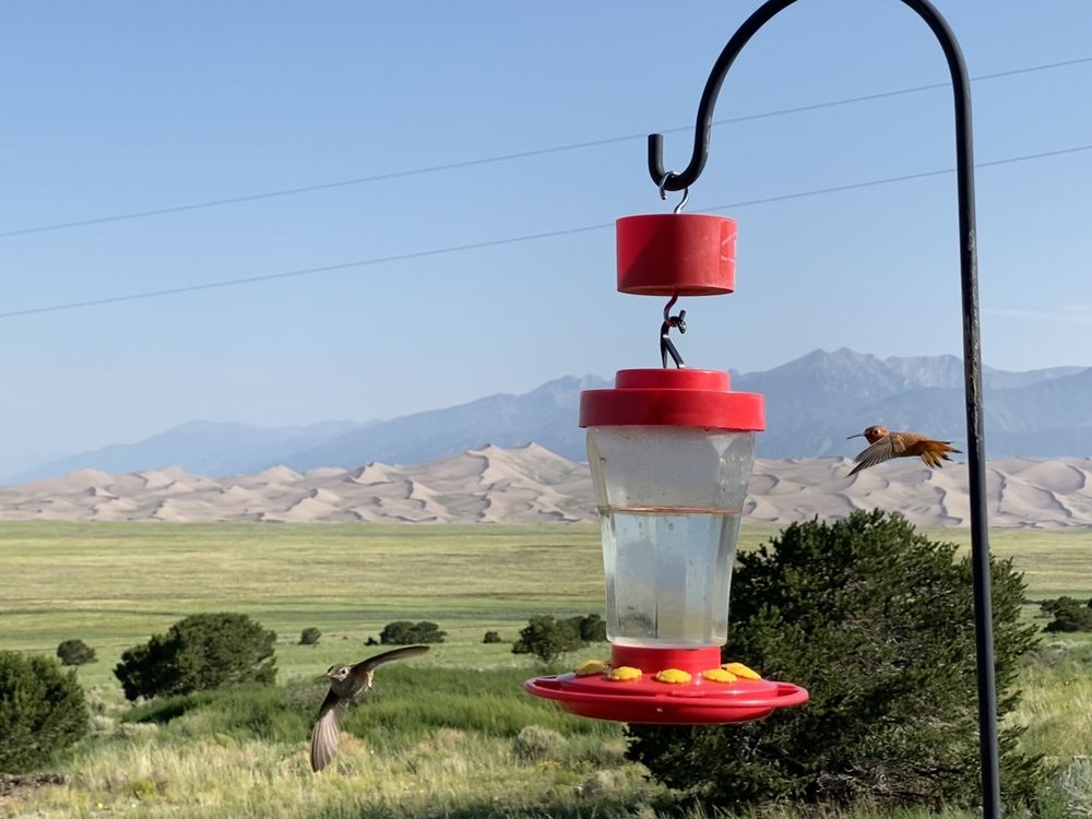 Great Sand Dunes Lodge: 7900 Hwy 150 N, Mosca, CO