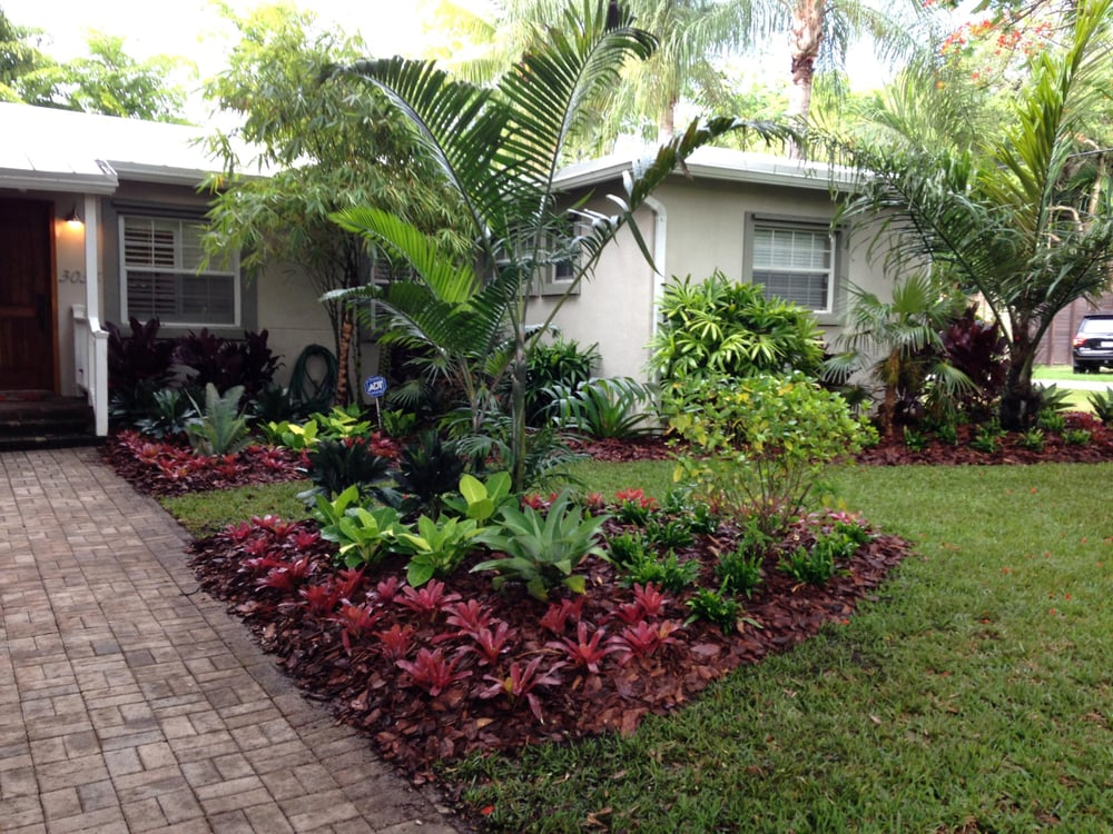 Tropical palms colorful bromeliads and low maintenance for Low maintenance ground cover ideas