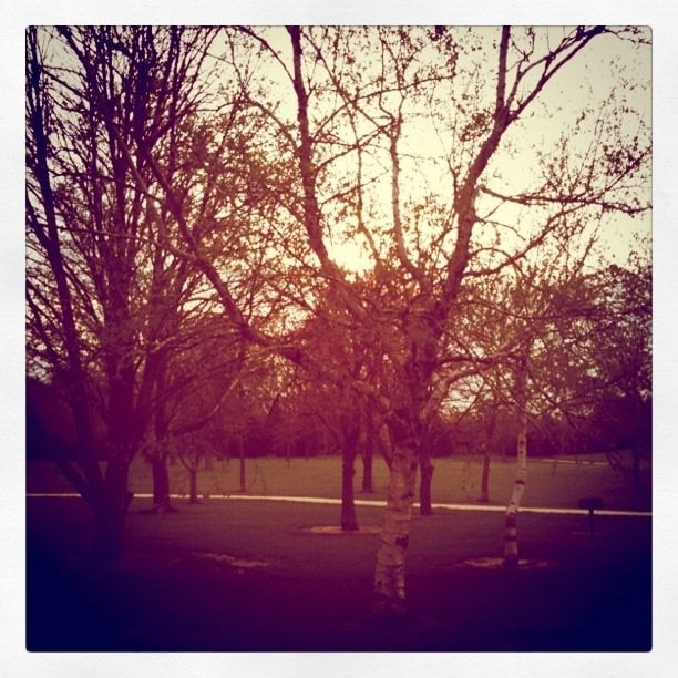 Morrissey Park: 1400 Windsor Rd, Champaign, IL