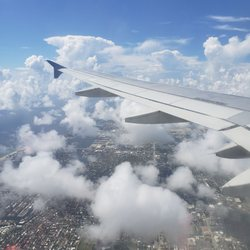 Yelp Reviews for Allegiant Airline - 16 Photos & 53 Reviews - (New