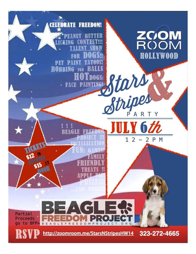 Zoom Room Dog Training 33 83