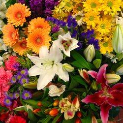 Photo Of Jim Ludwigu0027s Blumengarten Florist   Pittsburgh, PA, United States.  Mixed Flowers