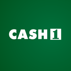 Cash advance places in big rapids mi photo 4