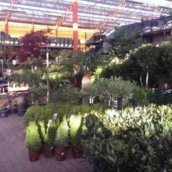 Tuincentrum osdorp 20 photos nurseries gardening for Tuincentrum amsterdam