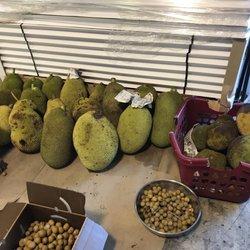 Vuon Co Chin Fruits Farm - 70 Photos & 35 Reviews - Farmers Market