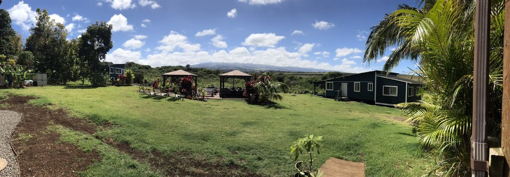 Peace of Maui