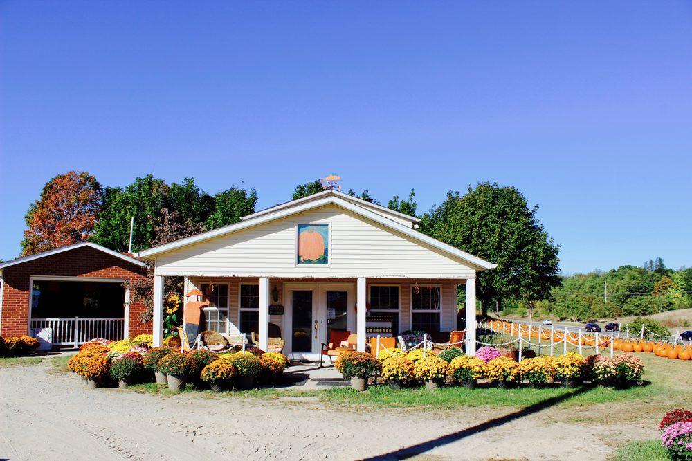 Gene The Pumpkin Man: 22637 M 43 Hwy W, Kalamazoo, MI