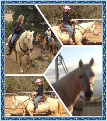 AA Ranch: 56410 Mitchell Rd, Anza, CA