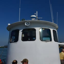 Queen fleet deep sea fishing check availability 27 for Queen fleet deep sea fishing clearwater fl